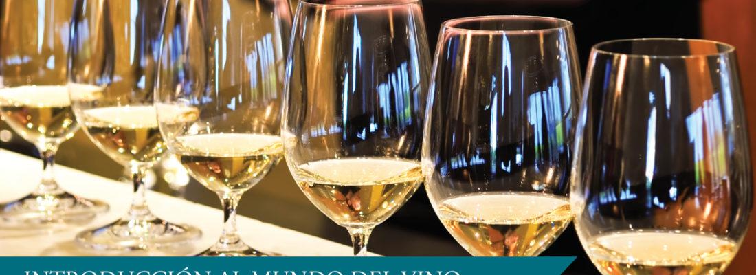 Introducción al mundo del vino